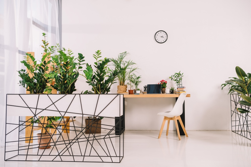 Zdrav život uz začinske biljke u kancelariji